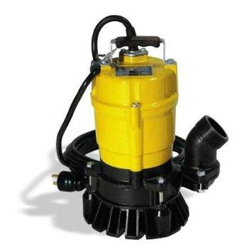 Where to find Pump 2  Submersible Electric in Decatur